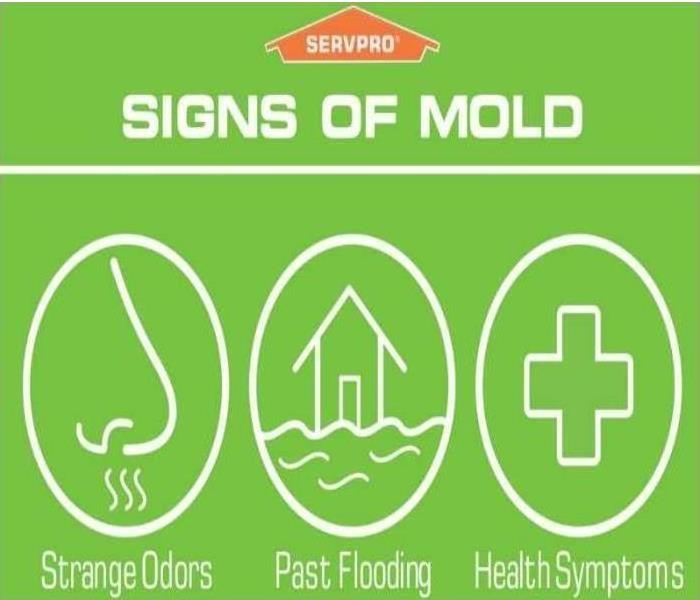 Mold Remediation Southwest Grand Rapids Take control of the Mold situation.