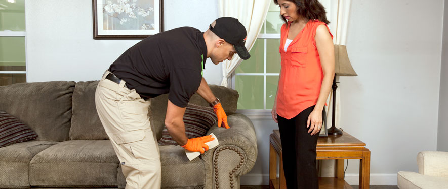 Southwest Grand Rapids, MI carpet upholstery cleaning